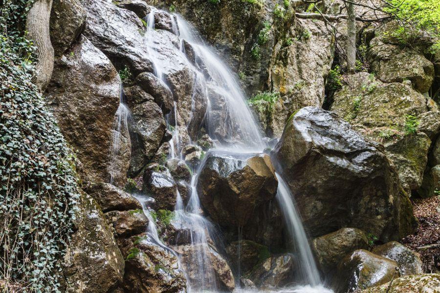 павелецкая водопад джурла фото разновидности каланхоэ, фото
